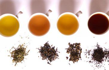 4 bonnes raisons de se mettre au thé et lesquels privilégier ?