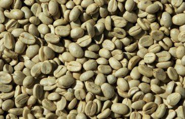 Café vert : découvrez ces 4 vertus et effets sur la santé